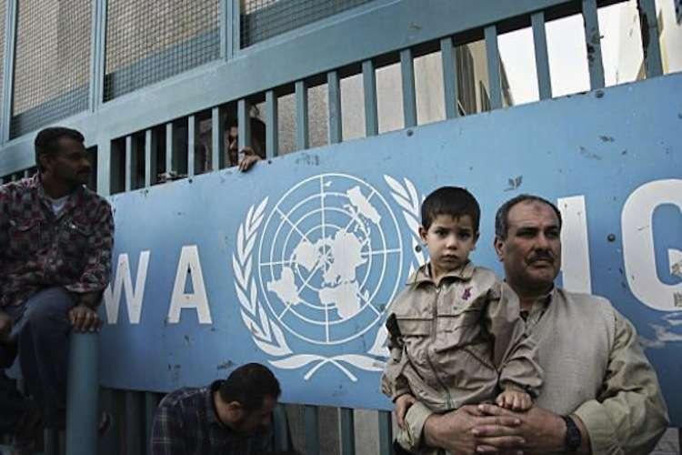 تعليق سويسرا وهولندا تمويل أونروا قرار طائش يقوّض حقوق اللاجئين الفلسطينيين
